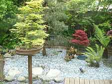 View of bonsai plinth