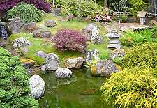 Pond photo, showing Japanese-style landscaping