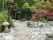 View of stepping stones and bonsai