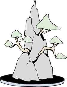 Rock planting style bonsai